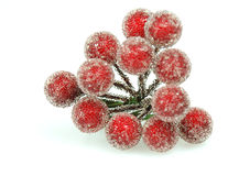 Holly berries. Close up of a christmas decoration Royalty Free Stock Photos