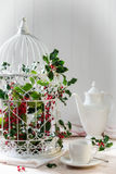 Holly & Berries Birdcage Royalty Free Stock Photos