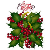 Holly berries design Stock Images