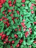 Holly and berries. Holiday candy sprinkles royalty free stock photo