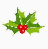 Holly berries icon Stock Photo