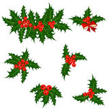 Holly berries set. Christmas symbol vector Stock Photography