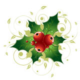 Holly Berry. Vector Illustration Representing Holly Berry with Floral Curls Isolated on White Royalty Free Stock Photo
