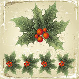 Holly berry. Retro-styled hand drawn holly berry stock illustration