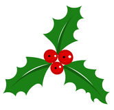 Holly berry. Symbol of Christmas over white. vector illustration Royalty Free Stock Images