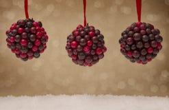 Holly Berry Balls foto de stock royalty free