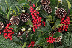 Holly Berry Beauty. Winter and christmas background with red holly berry clusters, mistletoe, spruce fir leaf sprigs and pine cones stock image