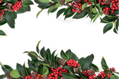 Free Holly Berry Border Royalty Free Stock Photography - 43094857