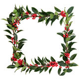 Holly Berry Border royalty free stock image