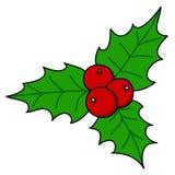 Holly berry  Christmas. Hand writing cartoon Stock Image