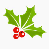 Holly berry Christmas icon Stock Photo