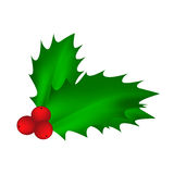 Holly berry, Christmas leaves and fruits icon, symbol, design. Winter vector illustration isolated on white background. Royalty Free Stock Images