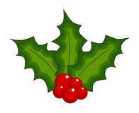 Holly berry, Christmas leaves and fruits icon, symbol, design. Winter vector illustration isolated on white background. Stock Photo