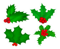 Holly berry, Christmas leaves and fruits icon, symbol, design. Royalty Free Stock Images