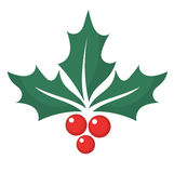 Holly berry graphic. Holly berry leaf symbol. Vector illustration royalty free illustration