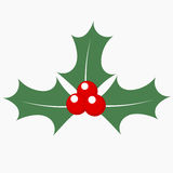 Holly berry icon Royalty Free Stock Photos