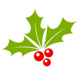 Holly berry. Icon vector illustration Royalty Free Stock Photo