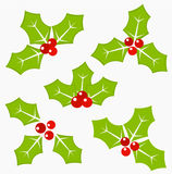 Holly berry icons Stock Photography