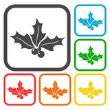 Holly berry icons set Stock Images