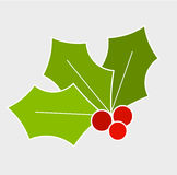Holly berry leaf. Holly berry, Christmas symbol. Vector illustration Royalty Free Stock Photo