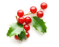 Holly berry leaves Christmas decoration Stock Photo