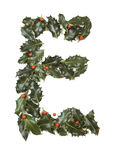 Holly With Berry Letter E stock images