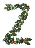 Holly With Berry Letter Z Stock Photo