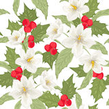 Holly berry mistletoe hellebore seamless pattern Stock Image
