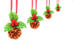 Holly berry and pine cone Stock Photos