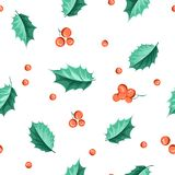 Holly berry. Royalty Free Stock Photography