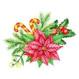 Holly Berry, stella di Natale rossa e confine dei brunch del pino Illustrazione dell'acquerello Fotografie Stock