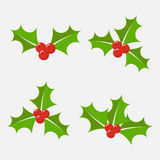 Holly berry vector set Stock Photography