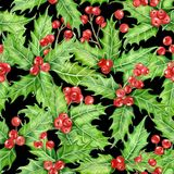 Holly berry watercolor stock image