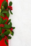 Holly border Stock Photography