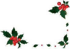 Holly border. Christmas border of shiny holly and bright berries Royalty Free Stock Images