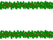 Holly Border Stock Image