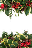 Holly Border Royalty Free Stock Photo