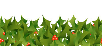 Holly Border Stock Photos