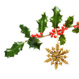 Holly bough decoration Stock Image