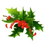 Holly bouquet Royalty Free Stock Image