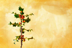 Holly branch with berries. Over gold hand painted background Stock Photography