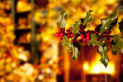 Holly Branch with Red Berries Royalty Free Stock Photography
