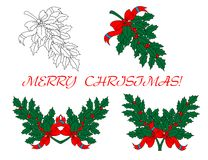 Holly branches for Christmas design Royalty Free Stock Image