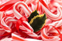 Holly and Candy Cane Background. Stock Photos