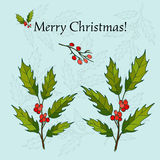 Holly Christmas Background Photo stock