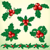 Holly Decoration stock images