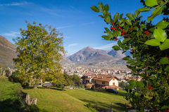 Holly on Domodossola. Piemonte, Italia royalty free stock photography