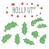 Holly Element Set Arkivfoton