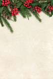 Holly and Fir Border Stock Image