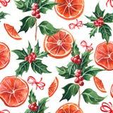 Holly gałąź z jagodami i suchym pomarańczowym bezszwowym wzorem Zdjęcia Royalty Free